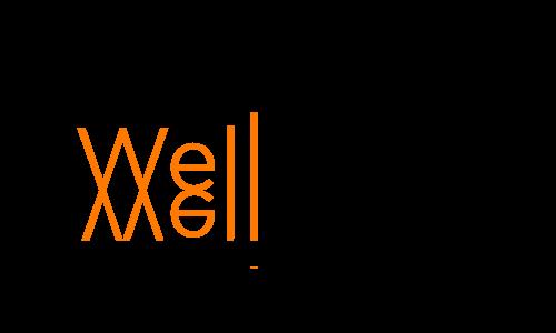 WellCAD™ - базовая версия